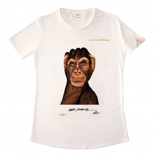 Scimpanzè 2